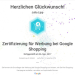 Zertifikat Google-Shopping