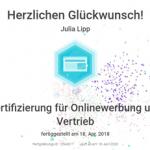 Zertifikat Onlinewerbung und Vertrieb
